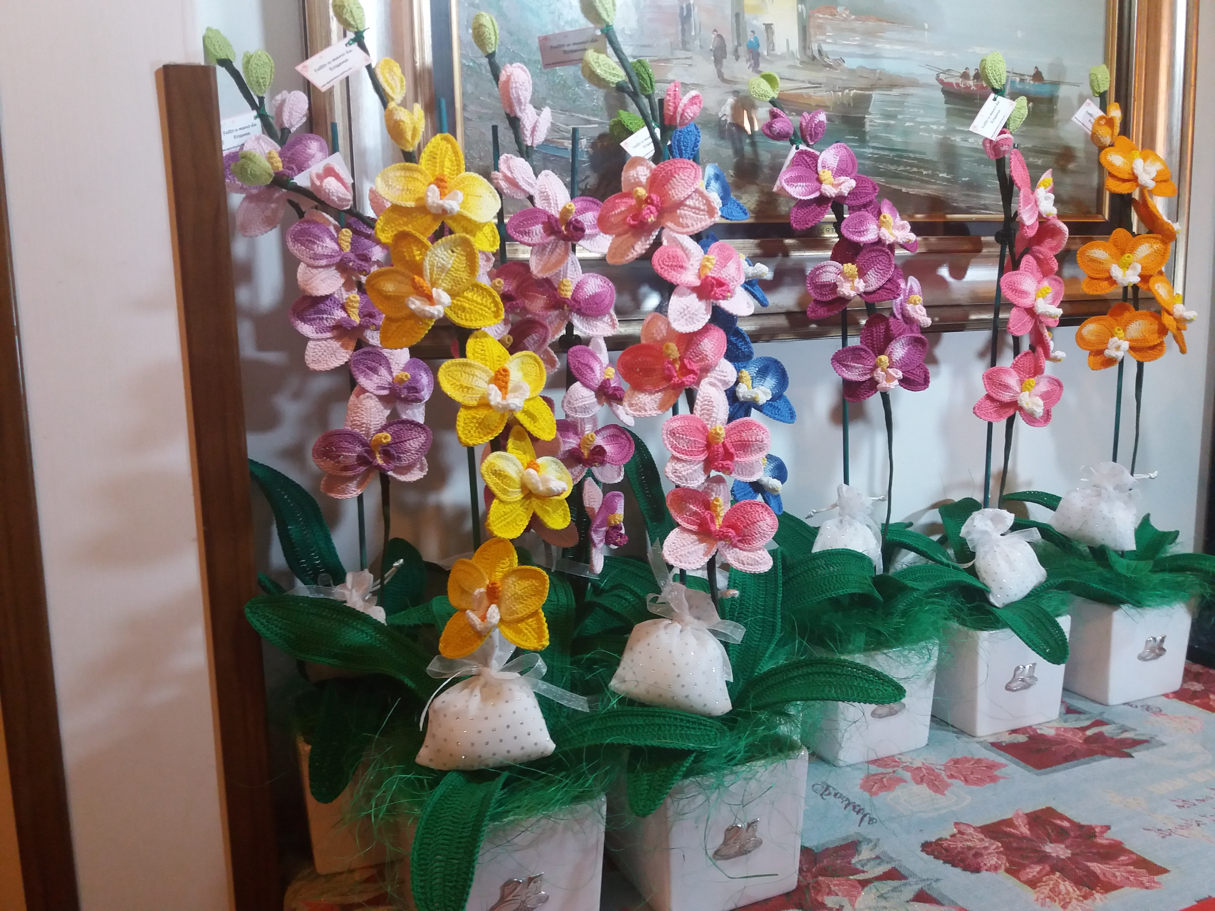 ORCHIDEE SINGOLO RAMO